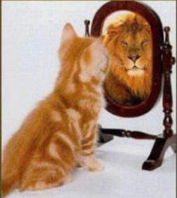 self_acceptance-2